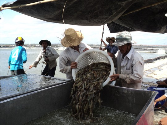 Agriculture and fisheries