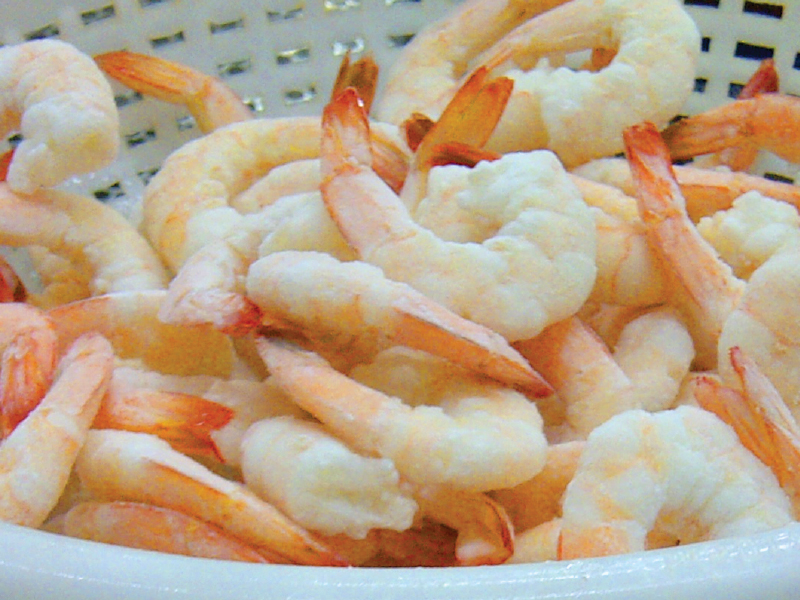 Vannamei cooked PDTO Shrimp